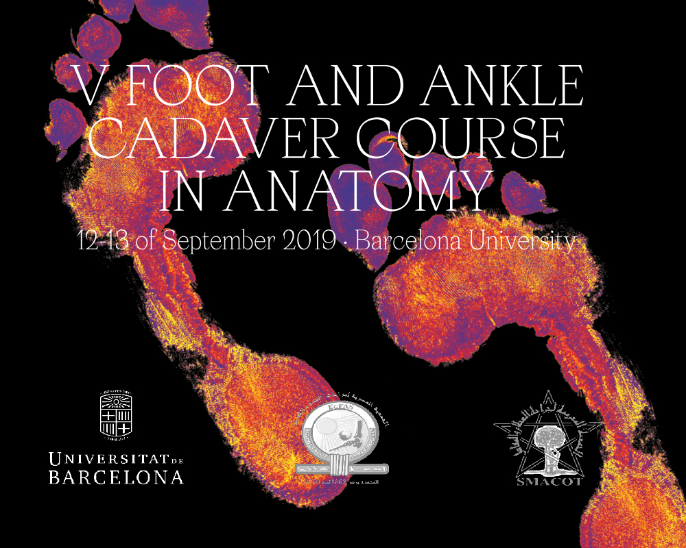 Foot & Ankle Cadaver Lab Home